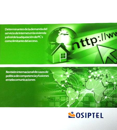 Determinantes de la demanda del servicio de Internet en le vivienda y el Rol de la adquisición de PCs como limitantes de acceso.